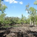 Lagoon of North Zoe Creek, Hinchinbrook Island, Queensland